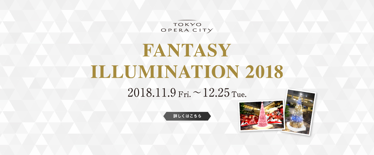 FANTASY ILLUMINATION 2018